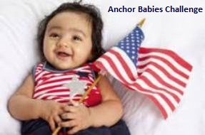 The Political Party Anchor Babies Challenge